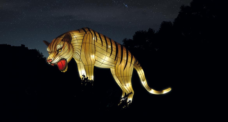 Espèces en voie d'illumination © China Light Festival B.V