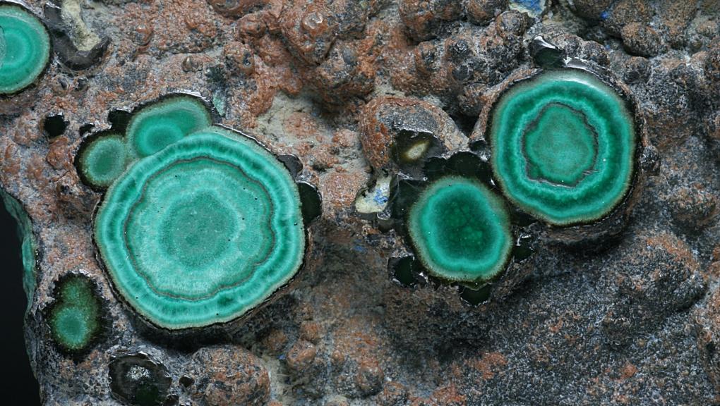 Zoom sur les couches concentriques de Malachite verte et d'Azurite bleu nuit (N° 103.43) © MNHN - Louis-Dominique Bayle