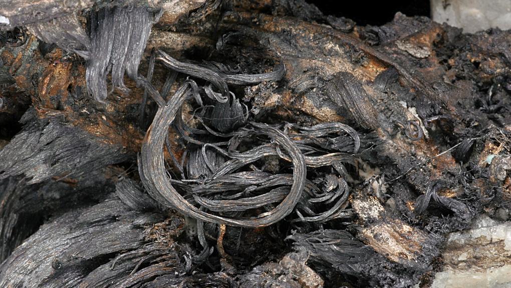 Zoom sur les filaments d'Argent natif enroulés sur eux-mêmes (N° 0.153) © MNHN - Louis-Dominique Bayle