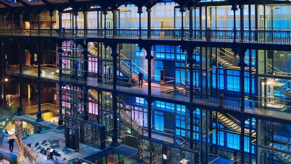 Grande Galerie de l'Évolution © Emmanuelle Blanc - MNHN
