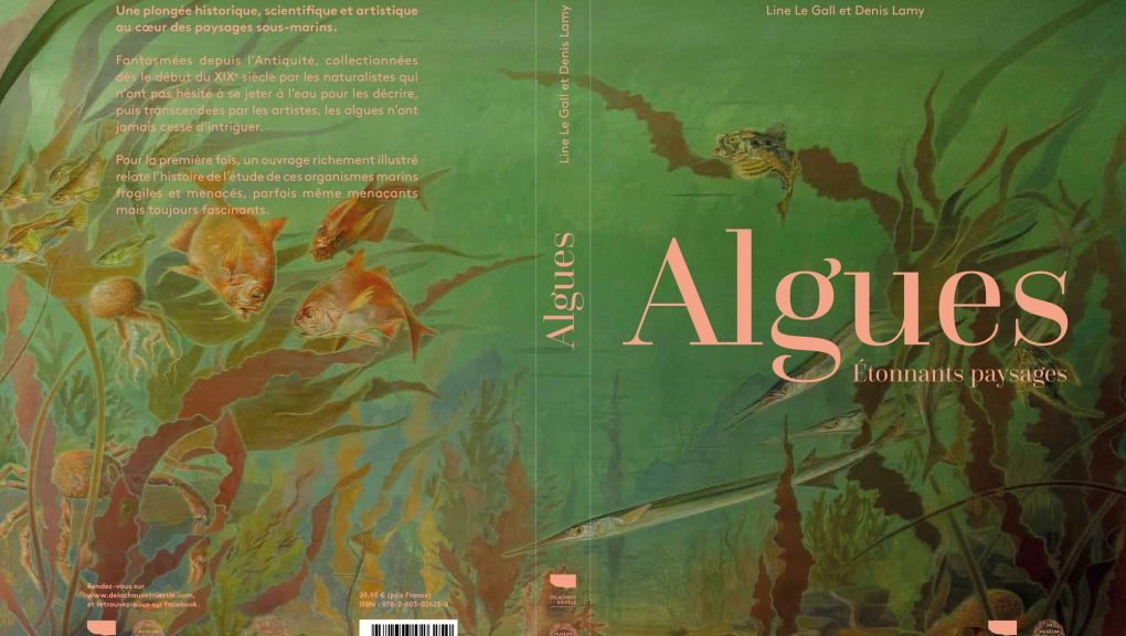 Algues, L. Le Gall & D. Lamy, couverture © Ed. Delachaux & Niestlé-Muséum