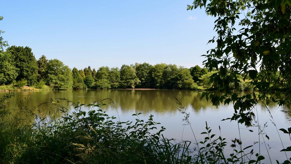 Vue de l'Arboretum de Versailles-Chèvreloup © MNHN - J. Munier