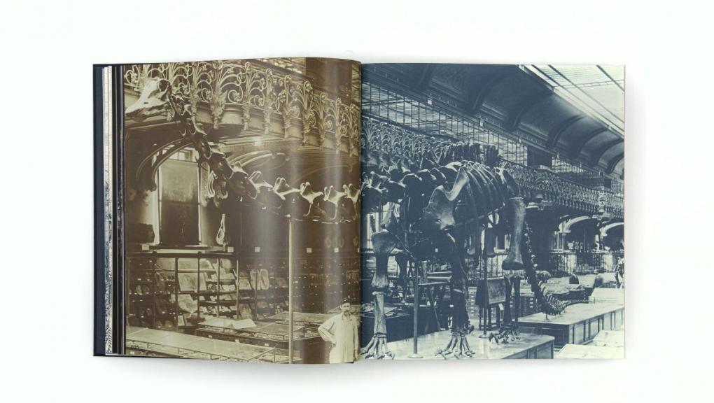 Vue intérieure du livre Muséum folie © MNHN