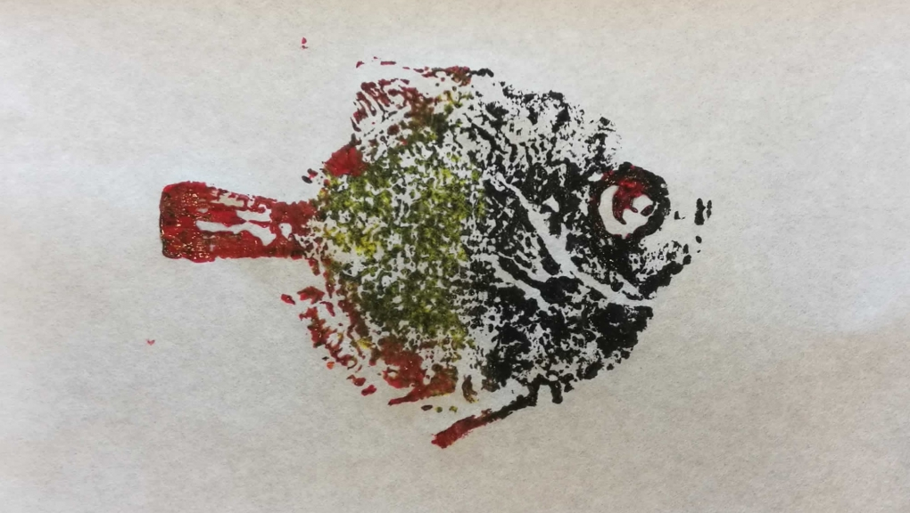 Atelier gyotaku - Caproidae Antigonia © MNHN