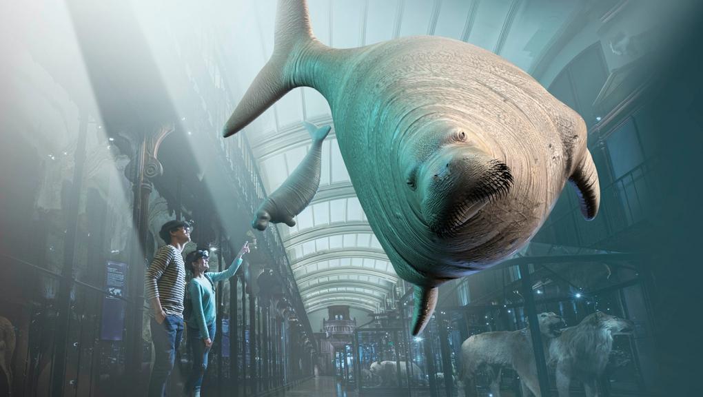 Revivre, les animaux disparus en réalité augmentée © SAOLA Studio / MNHN
