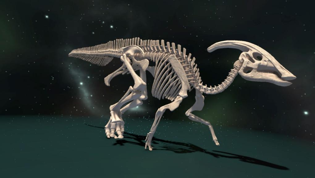 Voyage au cœur de l'Évolution - fossile © MNHN - Orange