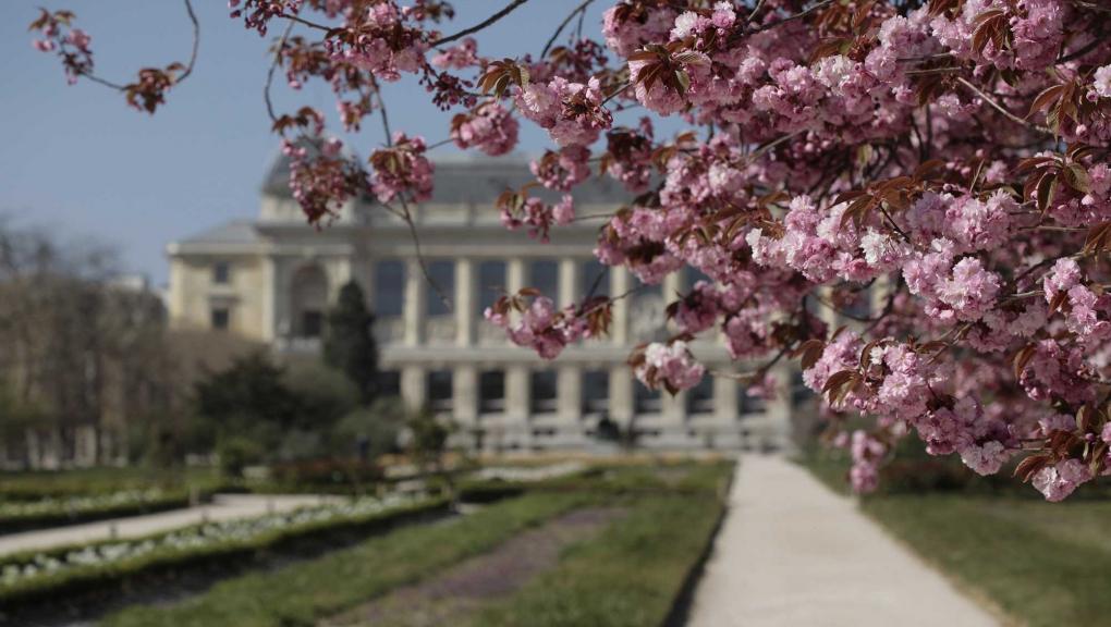 Jardin des Plantes © MNHN - Laurent Ballot
