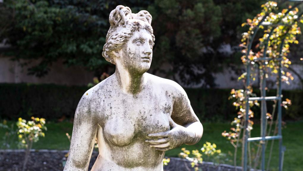 Venus genitrix © MNHN – A. Iatzoura