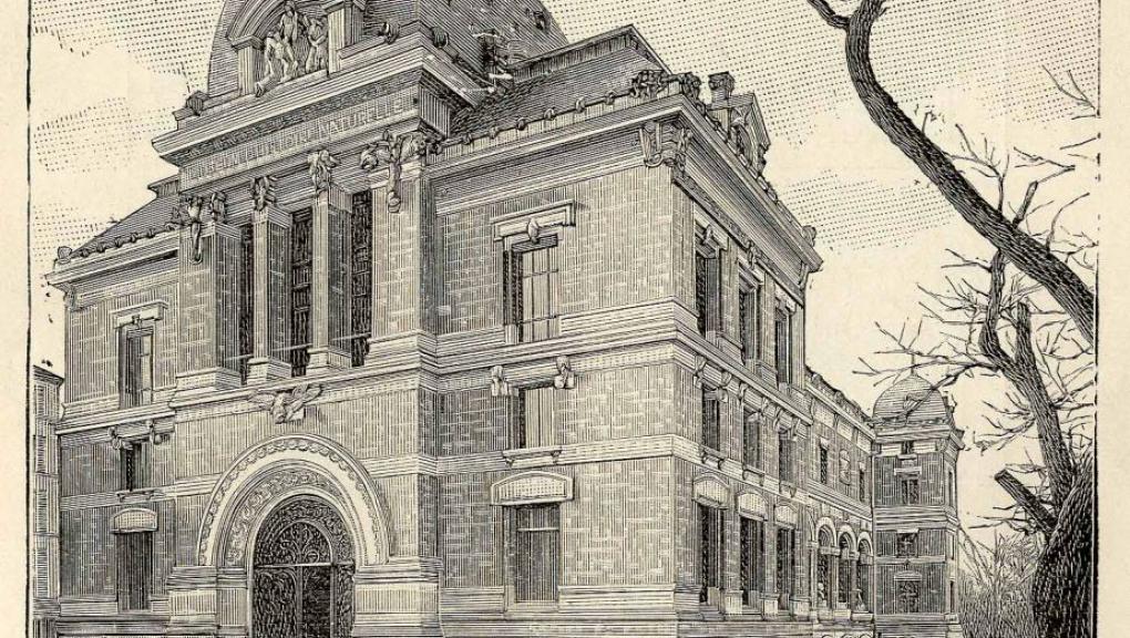 Galerie de Paléontologie © MNHN / Bibliothèque centrale