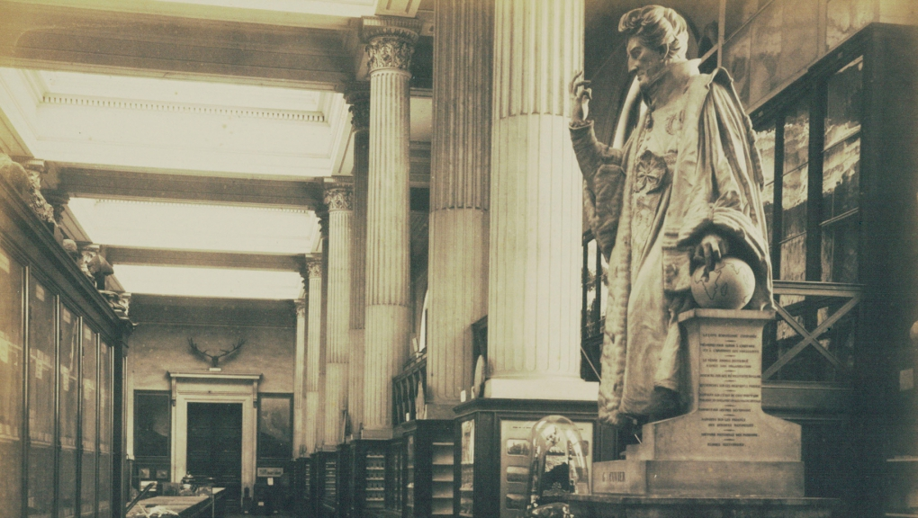 Interior view of the Galerie de Minéralogie, statue of Cuvier, 1885 © Pierre Petit