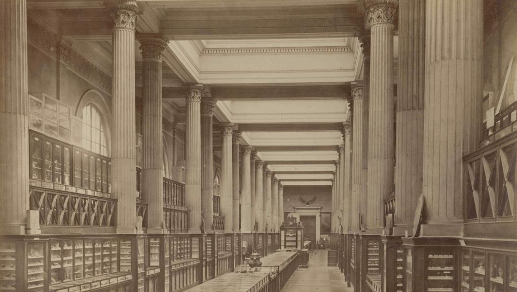 Interior view of the Galerie de Minéralogie, around 1885 © Pierre Petit