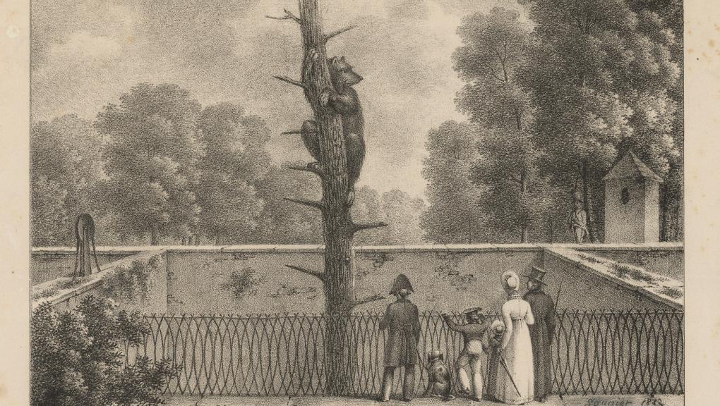 La fosse aux ours au XIXe siècle © MNHN - Bibliothèque centrale
