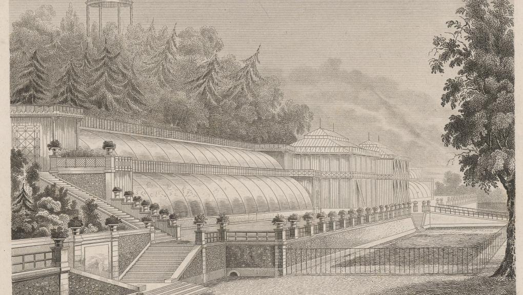 J. Guiguet, Nouvelle serre du Jardin des Plantes, à Paris. Ch. Rohault fils architecte, 1837 © Muséum national d'Histoire naturelle