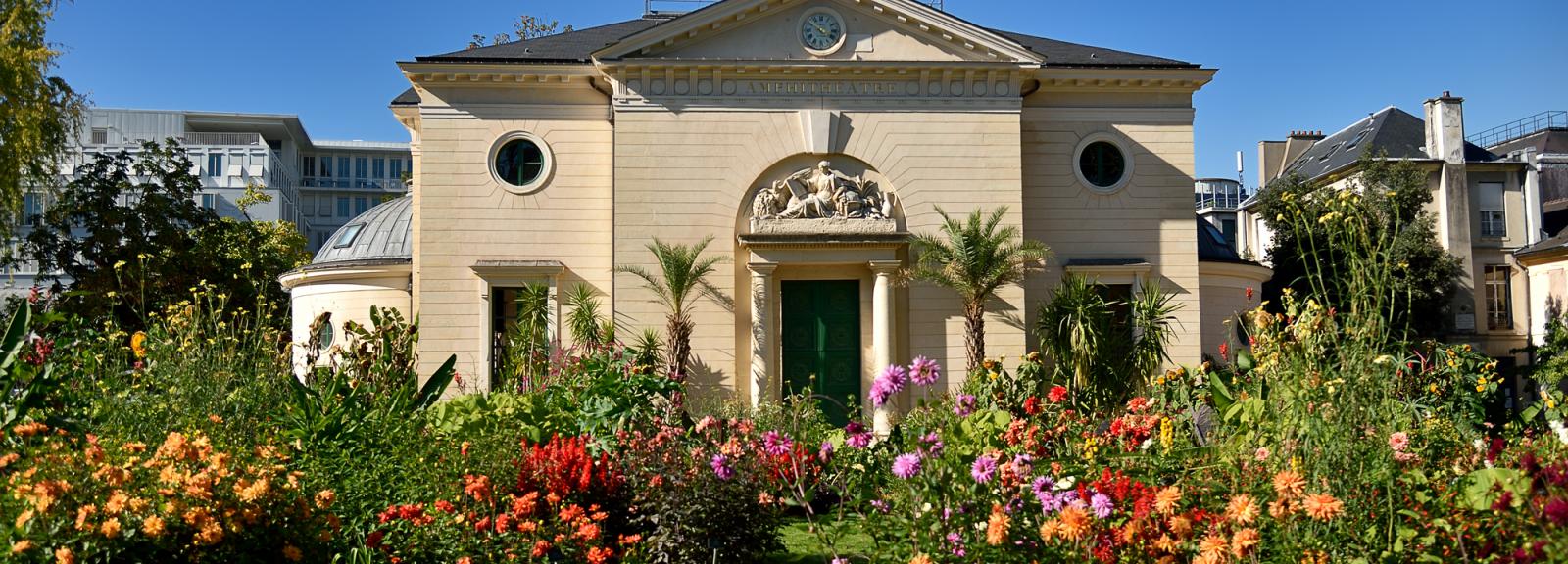 Grand Amphithéâtre du Muséum © MNHN – F-G. Grandin