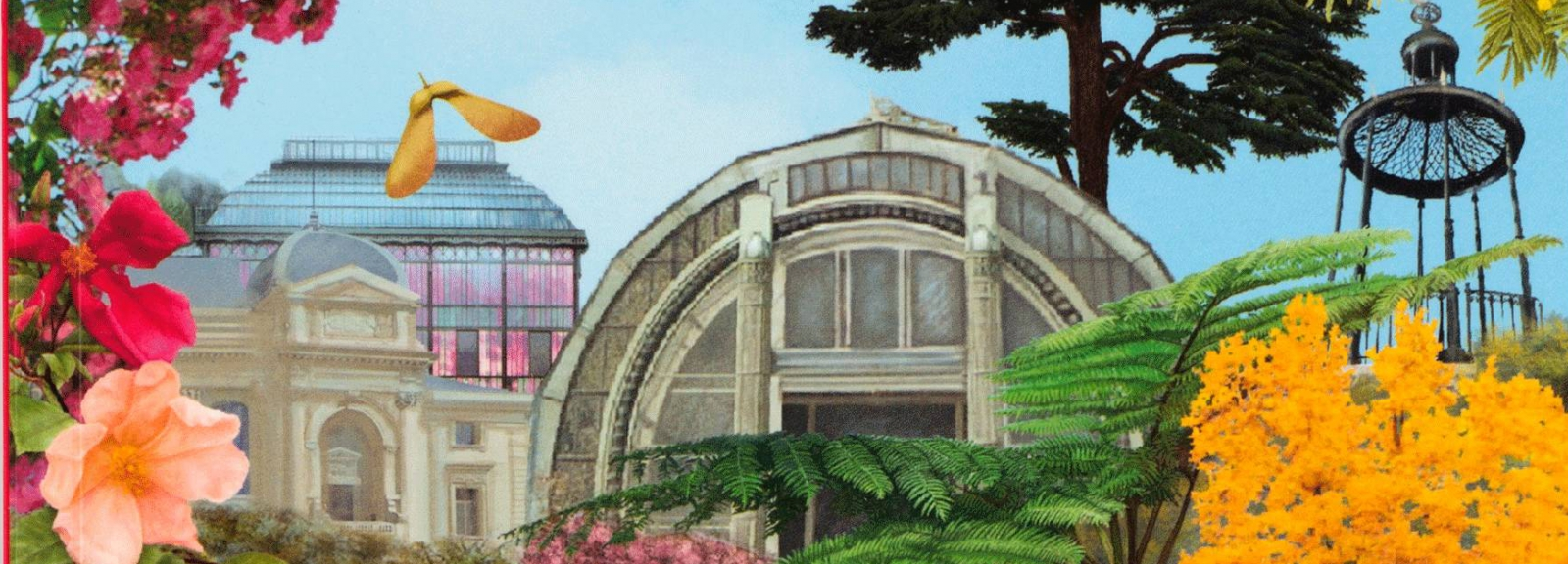 Couverture du Guide du Jardin des Plantes © MNHN