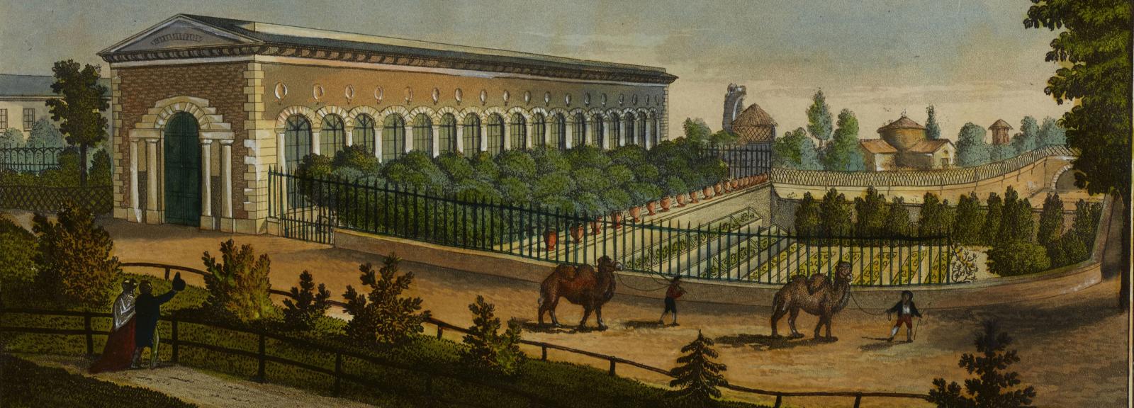 F. Aubertin - N. Huët, La serre tempérée. Vue du Jardin des Plantes, 1821 © Muséum national d'Histoire naturelle