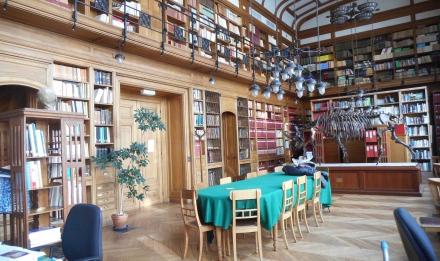 Bibilothèque de l'Institut de Paléontologie Humaine © MNHN
