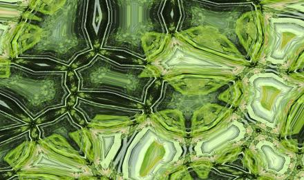 Hyaline © Ascidiacea / MNHN