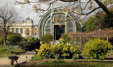 École de Botanique du Jardin des Plantes © MNHN - Patrick Lafaite