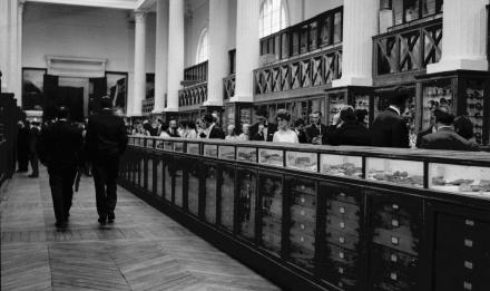 Réouverture de la galerie de minéralogie en 1967, nef de la galerie © MNHN - Jean-Marie Baufle