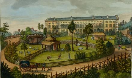 N. Huët, Vue du Jardin des Plantes, à Paris. Jardin Anglais et derrière de la Serre (1805) © Muséum national d'Histoire naturelle