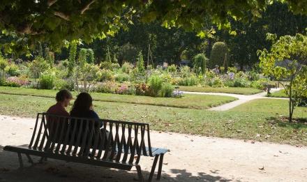 Visiteurs dans le Jardin des Plantes © MNHN - Patrick Lafaite