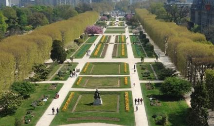 Les carrés de la perspective du Jardin des Plantes © MNHN - FG Grandin