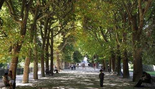 Jardin des Plantes © Manuel Cohen