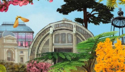 Vignette Guide du Jardin des Plantes © MNHN