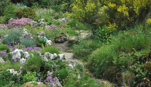 Jardin alpin © MNHN - Emmanuelle Goix