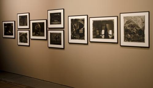 Exposition Alchimies - Clichés de Sarah Moon © MNHN - JC Domenech
