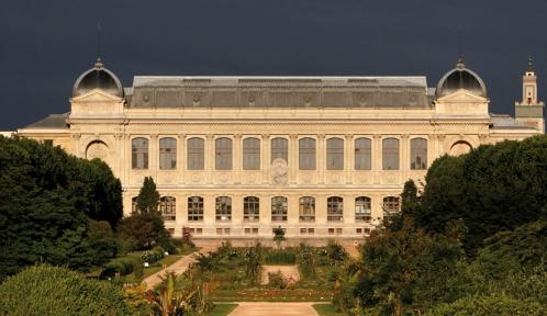 Jardin des Plantes avec, au fond, la Grande Galerie de l'Évolution © MNHN - Manuel Cohen