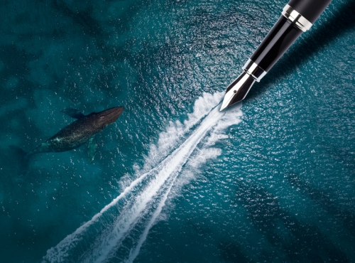 Visuel Concours de nouvelles © Soo hee kim, Ilyas Kalimullin, Chase Dekker/Shutterstock.com