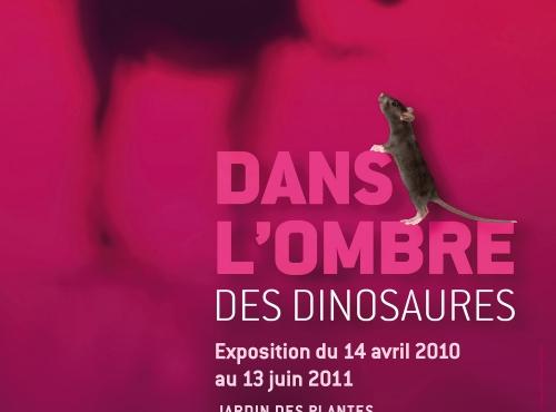 Exposition Dans l'ombre des dinosaures © MNHN