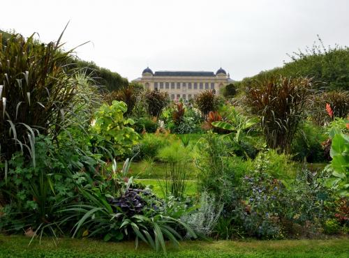 Jardin des Plantes avec la Grande Galerie de l'Évolution © MNHN - Jérôme Munier