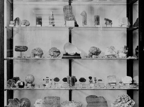 Pierpont Morgan 1912–1931 showcase © MNHN - Bibliothèque centrale