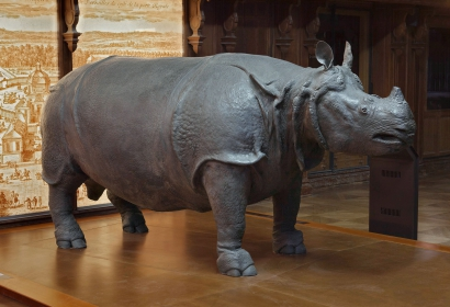 Le rhinocéros de Louis XV © MNHN - B. Faye