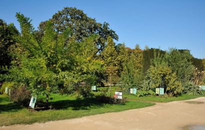Jardin des Plantes, Carré Lamarck © MNHN