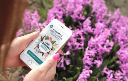 Web app de la ménagerie