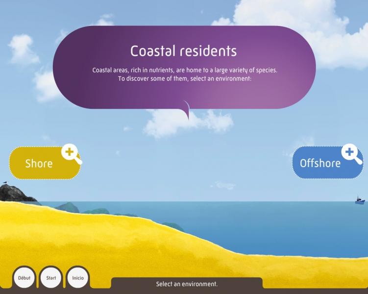Coastal residents - Media device of the Grande Galerie de l'Évolution