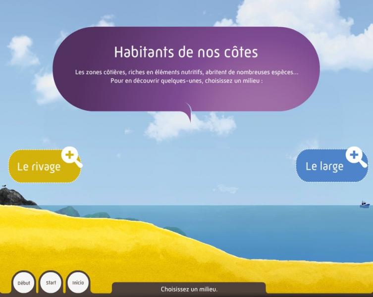 Habitants de nos côtes - Dispositif multimedia de la Grande Galerie de l'Évolution