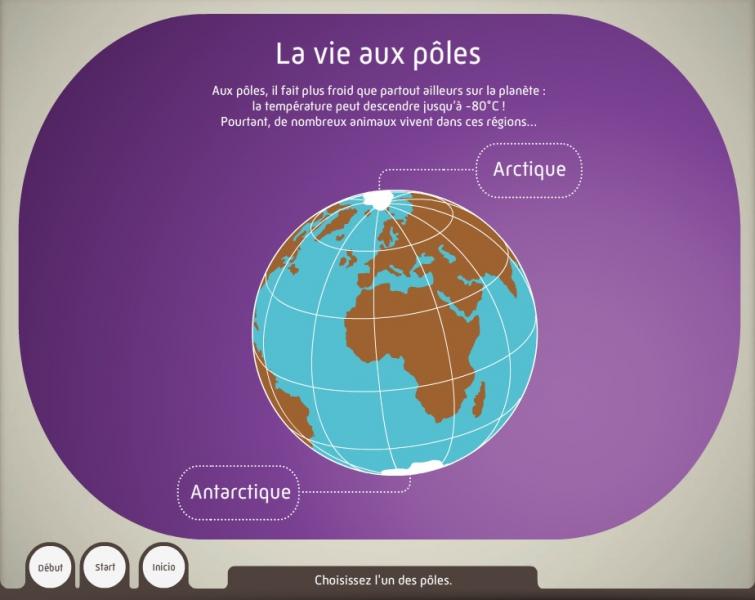 La vie aux pôles - Dispositif multimedia de la Grande Galerie de l'Évolution