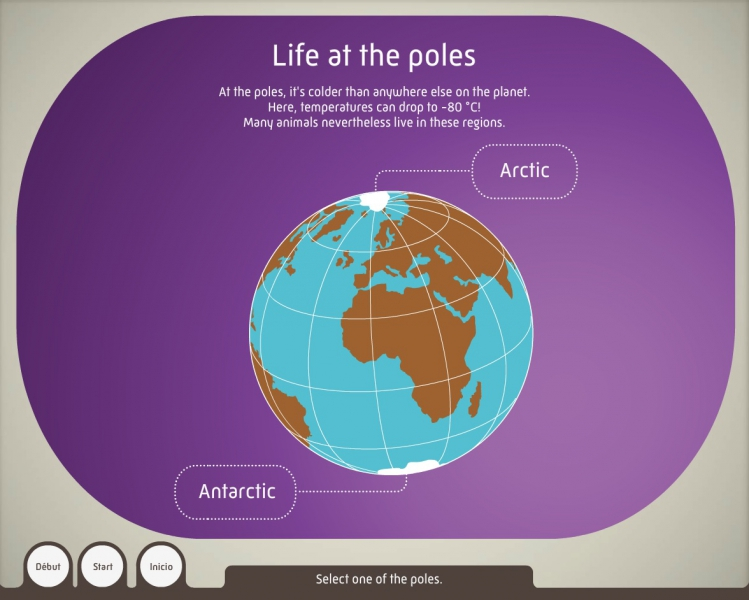 Life at the poles - Media device of the Grande Galerie de l'Évolution