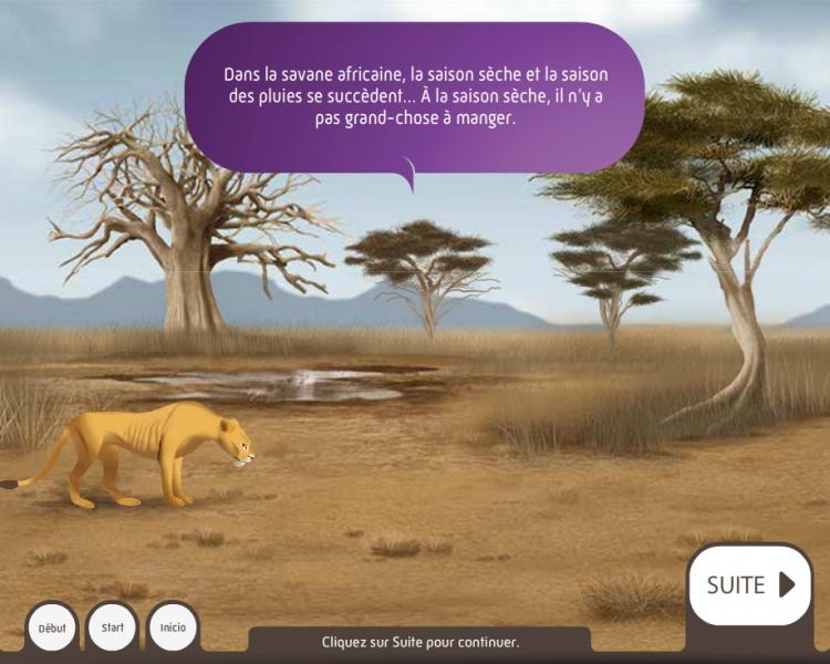 Qui mange quoi dans la savane ? - Dispositif multimedia de la Grande Galerie de l'Évolution