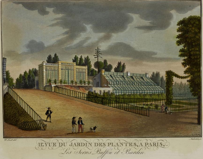 N. Huët, Les serres Buffon et Bardin. Vue du Jardin des Plantes (avant 1821) © Muséum national d'Histoire naturelle