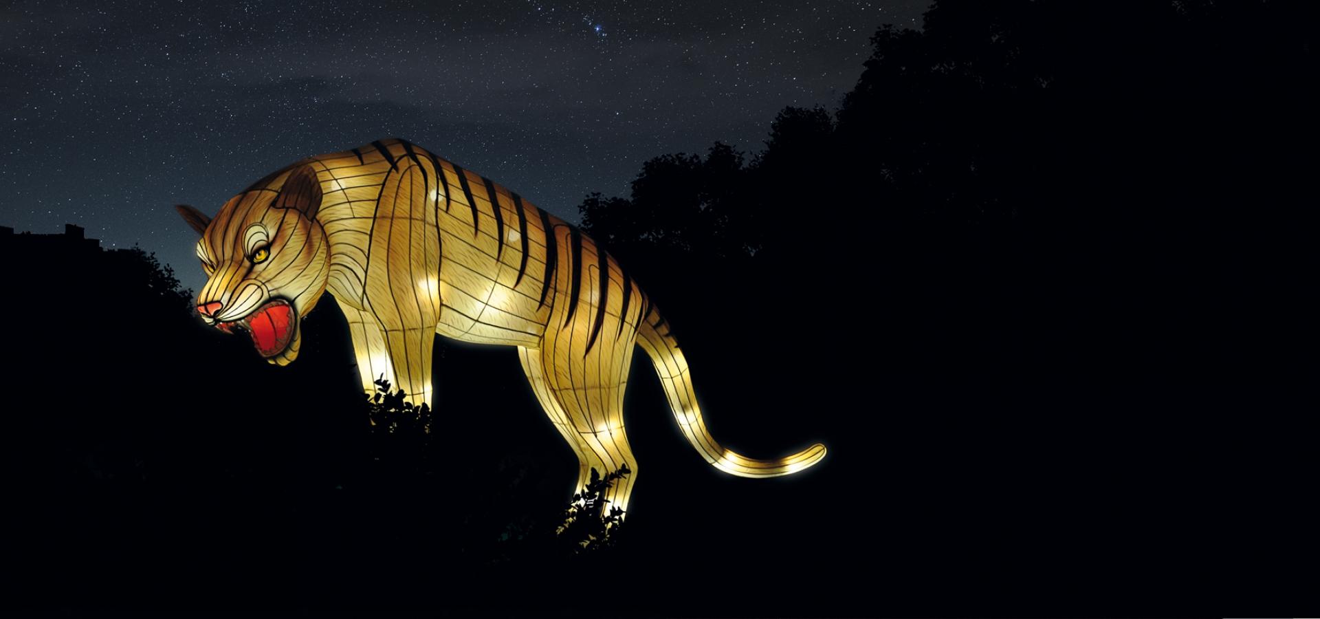 Espèces en voie d\'illumination | Galeries, Jardins, Zoo ...