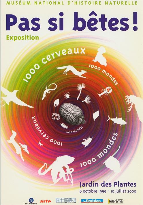 Exposition Pas si bête ! 1000 cerveaux, 1000 mondes © MNHN