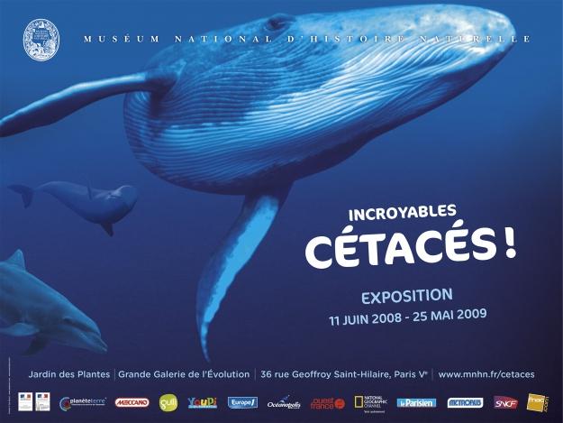 Exposition Incroyables Cétacés ! © MNHN
