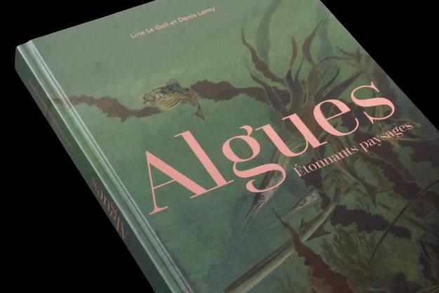Algues, Étonnants paysages, Beau livre © MNHN