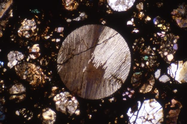 Chondre dans la météorite de Sainte Rose (x50) © MNHN
